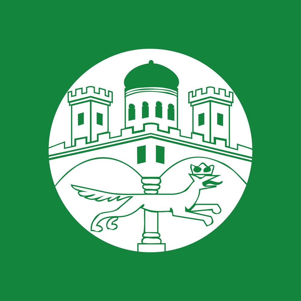 SV Remagen 1919 e. V.